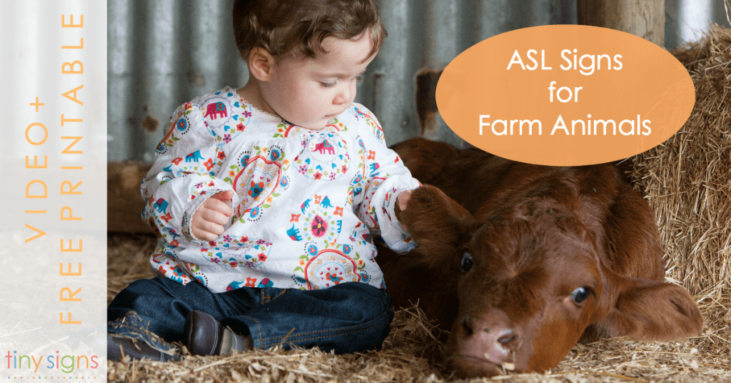 ASL Signs for Farm Animals