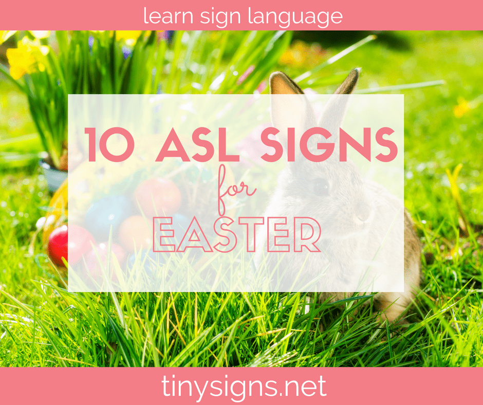 Learn 10 ASL signs with an Easter theme in this free video. Download a free printable of the signs as well!
